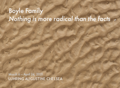 """Boyle Family """"Nothing is more radical than the facts"""" at Luhring Augustine Chelsea"""