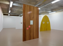 Sensory Spaces 3: Elad Lassry