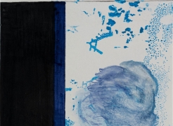 Dominique Gonzalez-Foerster & Nick Mauss | Roberto Burle Marx: Brazilian Modernist