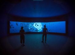 Doug Aitken | Inaugural Frontier Art Prize awardee
