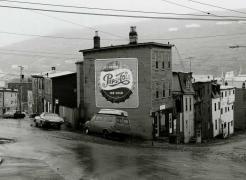 Newfoundland Project Terra Nova Suite, 1981-2006