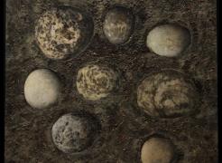 Stone Series, 1991 - 1993