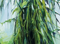 Fern Canyon, Paintings by Claire Sherman