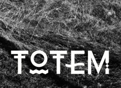 Totem, group exhibition