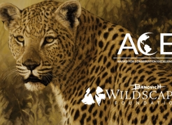 2018 ACE Award for Conservation Excellence
