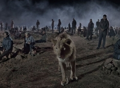 An Interview with Nick Brandt