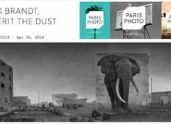 Nick Brandt on Paris Photo