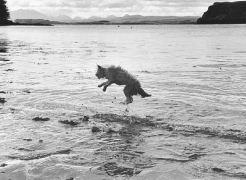 Photographer Elliott Erwitt in Search of the Real Scotland