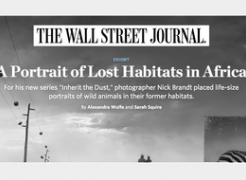 Nick Brandt in The Wall Street Journal