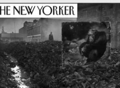 Nick Brandt in The New Yorker