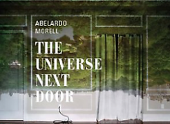 Abelardo Morell: The Universe Next Door opens at the Art Institute of Chicago