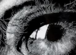 Sebastiaan Bremer: Eyes