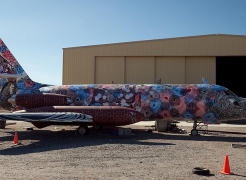Andrew Schoultz -The Boneyard Project: Return Trip- Pima Art and Space Museum Tucson, AZ