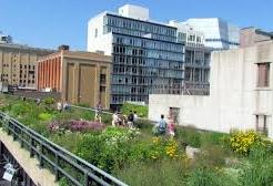 Firelei Báez on the High Line