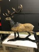 Eden Elk