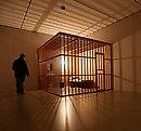 A Year in a Cage: A Life Shrunk to Expand Art