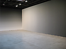 Site Specifics: Iran do Espírito Santo: Deposition at Sean Kelly Gallery