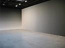 Site Specifics: Iran do Espírito Santo: Deposition at Sean Kelly Gallery