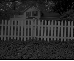 Underground Railroad sites exposed through lens of Chicago photographer Dawoud Bey in haunting new Art Institute exhibit