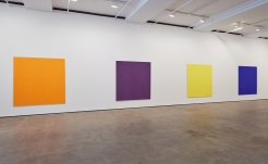 Goings on Around Town: Callum Innes