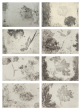 Yan Shanchun - Lakeside Flowers 湖边的花