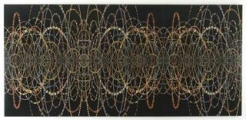 Fred Tomaselli at The Rubin Museum of Art