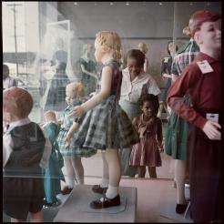 Segregation Story