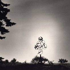 Black and white photo of a sculpture in the distance, surrounded sparsely by trees. The sculpture features seven circles in an arrow shape, pointed up to the sky. Within the circes there are abstract shapes of birds.