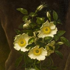 Martin Johnson Heade (1819-1904)