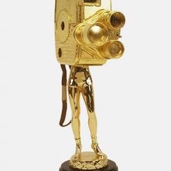 TRIBECA FILM FESTIVAL AWARD