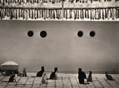 The Extraordinary World of Pentti Sammallahti