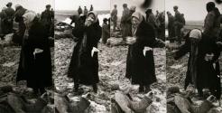 Dmitri Baltermants: Photographs 1940s-1960s