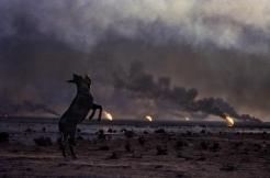 Apocalypse: Contemporary Visions