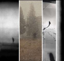 Vanishing Boundaries: Six Studies in Contemporary Photography