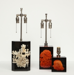 Lucite and Coral Lamps