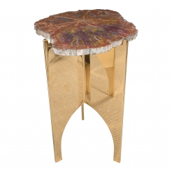 Petrified Wood Table with Mirrored Polished Bronze Base