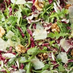 Wild Arugula, Treviso, and Fennel Salad