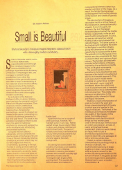 Small is Beautiful by Aasim Akhtar