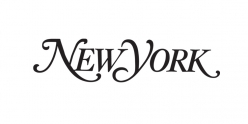 New York Magazine, News and Politics