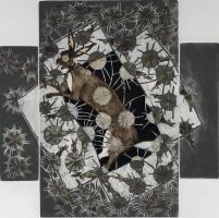 Francisco Toledo : Selected Prints 1970 - 2018