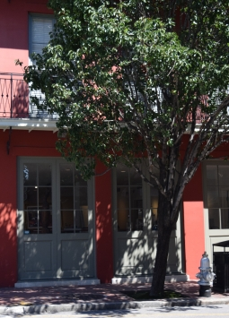 Brand New Orleans Art Gallery