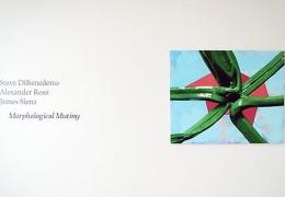 Morphological Mutiny: Steve DiBenedetto, Alexander Ross and James Siena