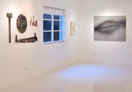 Betty Tompkins solo exhibition, GAVLAK Palm Beach