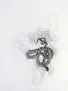 Snake, Rob Wynne, 2014