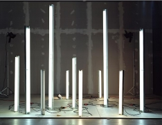"""No.667, 2008 """"Fluorescents and Incandescents with Illumination from Fluorescents"""""""