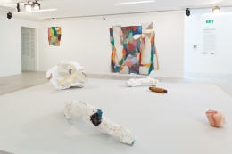 Alexis Teplin, sss T !!, Hayward Gallery, London, 2013