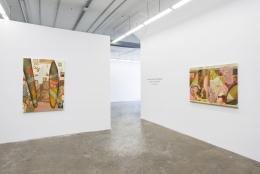 Installation view Jose de Jesus Rodriguez:Back on the Inside, 2021