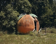 "Lisa Anne Auerbach, Florida Orange, near Mt. Dora, from series ""Along the Dixie Highway,"" 2007"