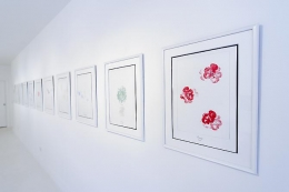"Aleksandra Mir & Andy Warhol: ""The Meaning of Flowers"" & ""Wild Raspberries"""