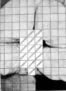 Censored Grid #1, 1974